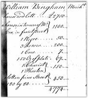 William Bingham Taxes